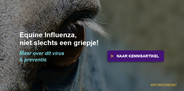 Info over Equine Influenza