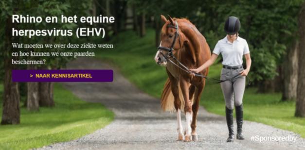 Rhino en EHV info vaccineren