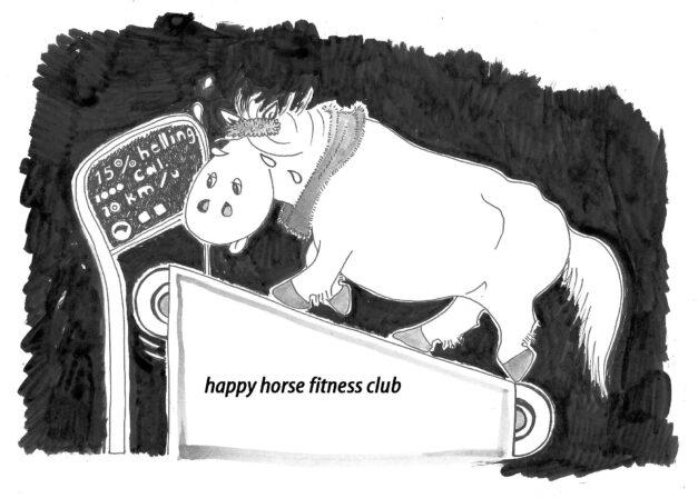 dikke pony fitness02