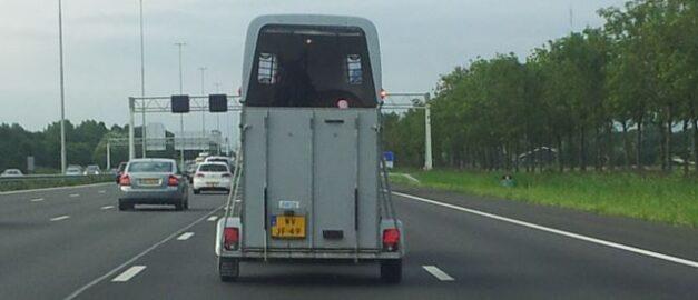 vervoer kan stress veroorzaken bij paarden