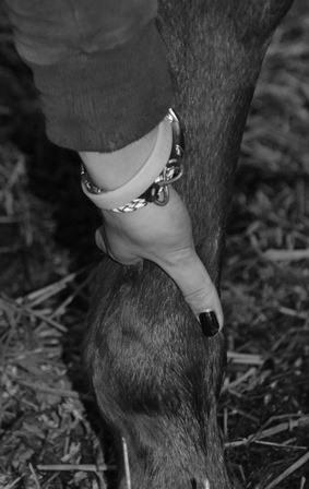 hand-voelt-langs-been