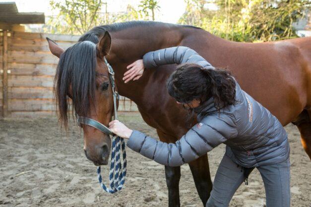 Chiropractie - mobilisatie van de hals naar links - Anna Lagendaal
