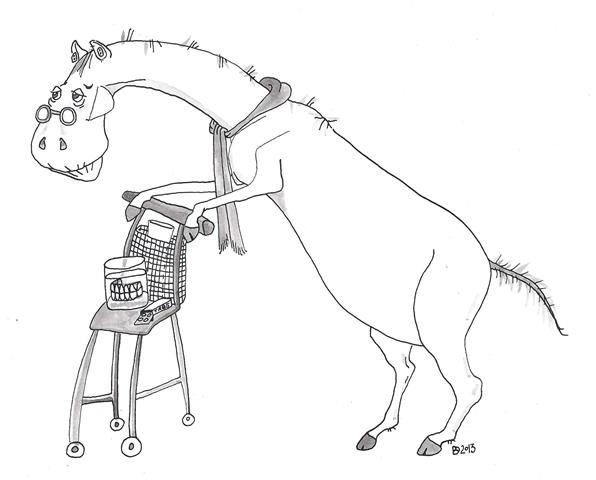 Gebitscontrole ouder paard (illustratie door Dymphie van den Bergh)