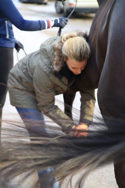 buigproef bij paard - Morgan Lashley
