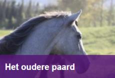 Rubriek Het oudere paard - Paardenarts.nl (1) smartblock