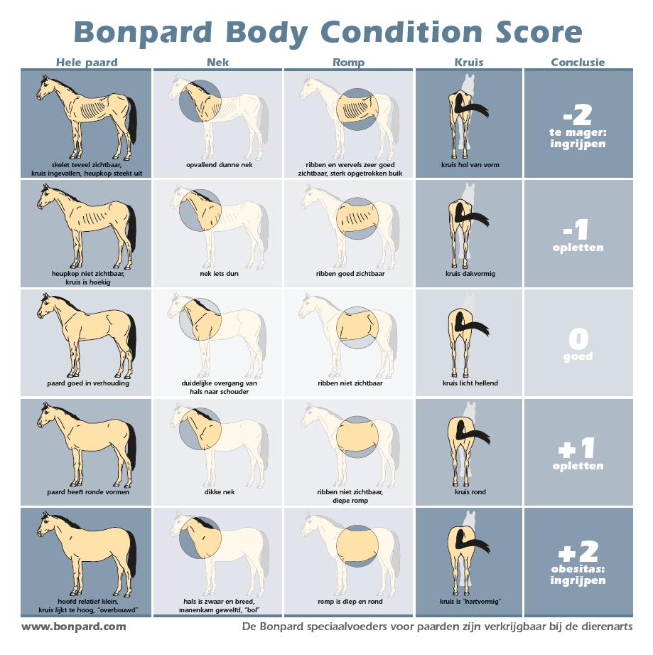 Bonpard_Body_Condition_Score
